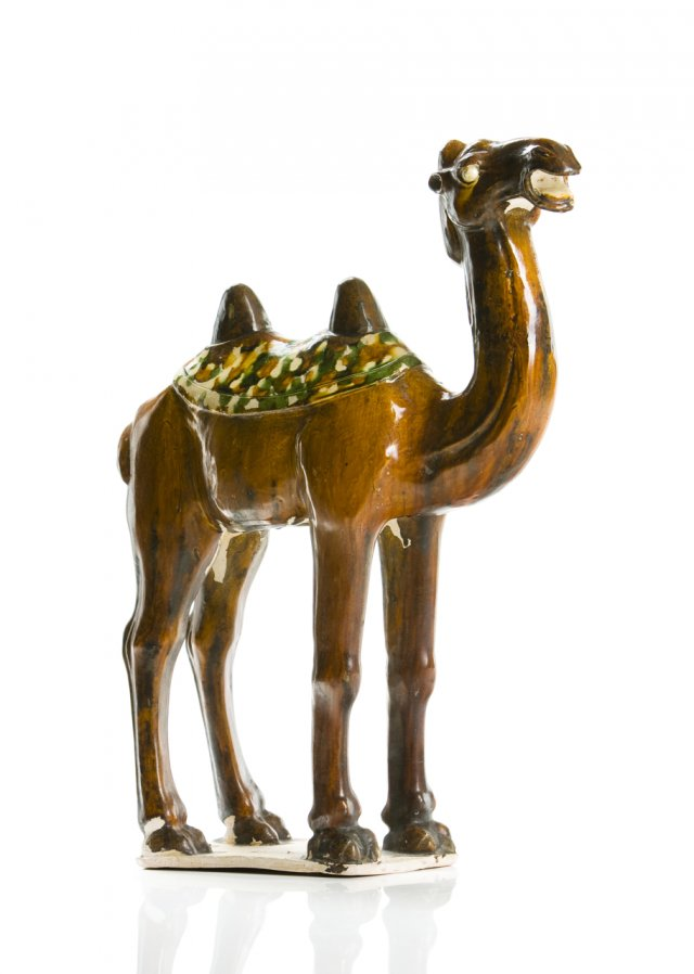 Camelo Luotuo em Sancai