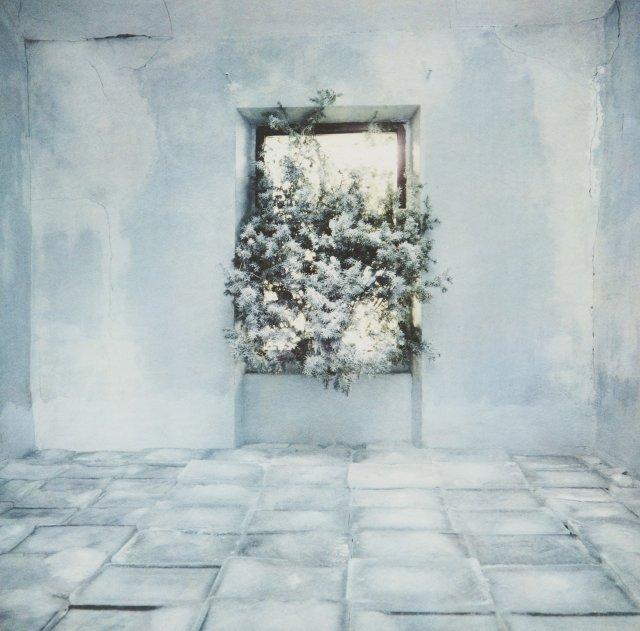 La 13eme Chambre d´Amour: O Vitral