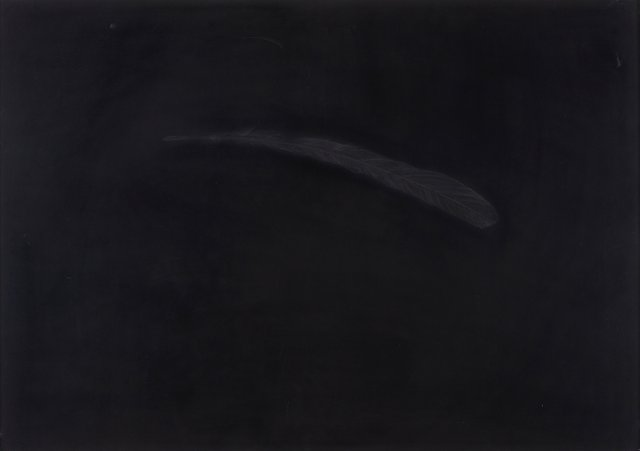 """Feather"", 2009"