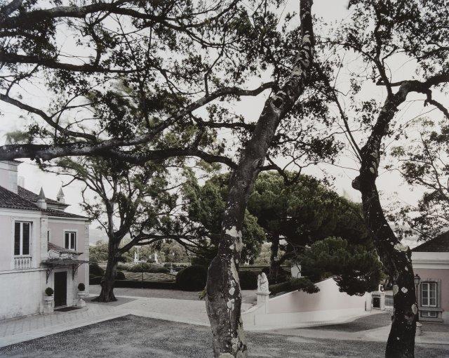 """""""Mfc336.10 Patio dos Bichos e Jardim de Buxo, a partir do Jardim da Cascata, Palácio de Belém 12.08.2008, 20:37hrs"""""""