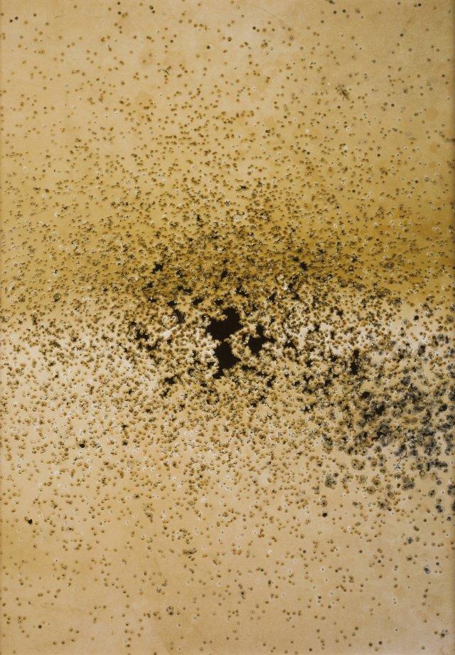 """""""Carreira de tiro"""", 2000"""