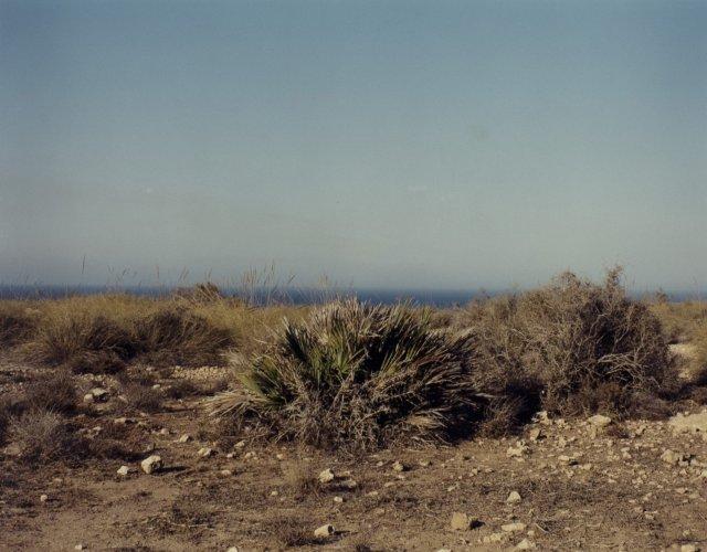 No Man's Land, 2002