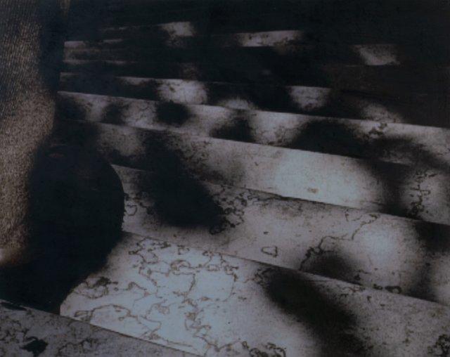 Hipólito, 2003