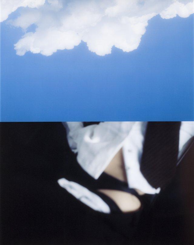 """American Landscape (8)"""